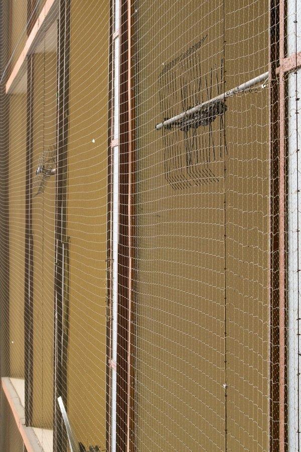 delle finestre con delle reti