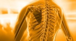 ortesi, ambulatori di fisioterapia, educazione motoria
