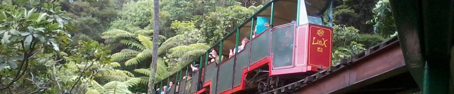 railway trip with dalroy coach tours