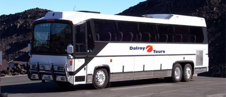 dalroy bus services