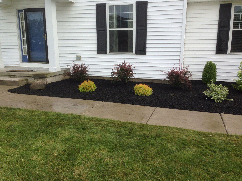 front yard landscape design - Amherst, NY