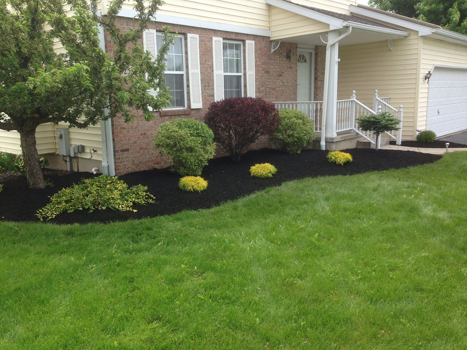front yard landscaping - Lockport, NY