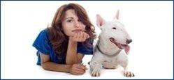 servizio accompagnamento cani