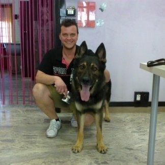 centro addestramento cani
