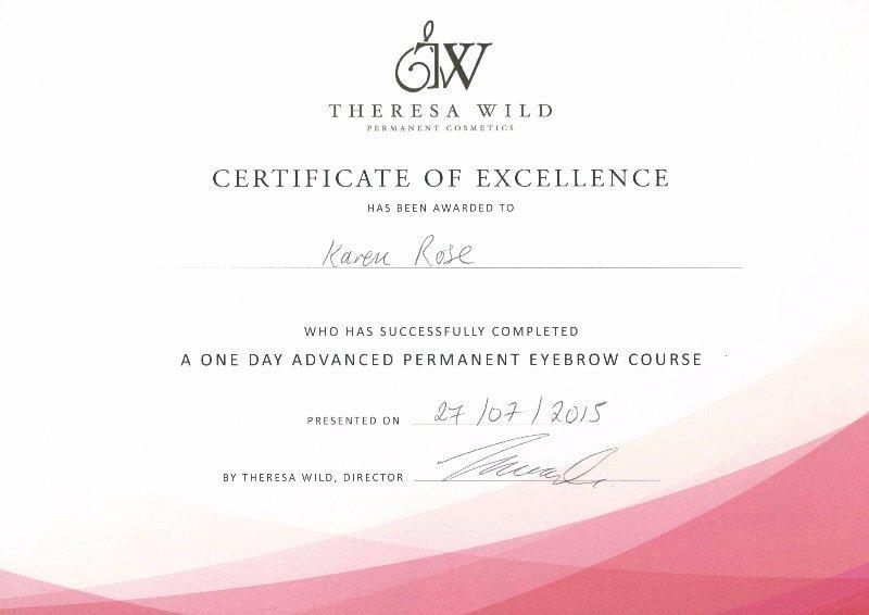 Certificate of exellence
