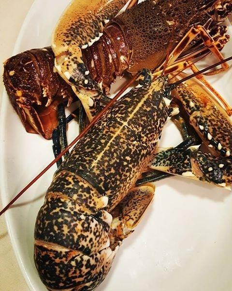 piatti a base di pesce, ristorante agrigento