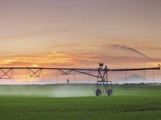 irrigazione e concimazione viti