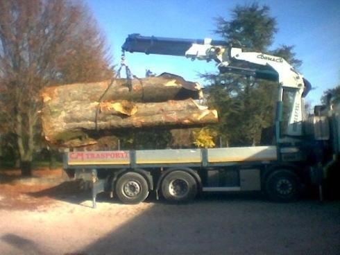 Trasporto legnami con autogru
