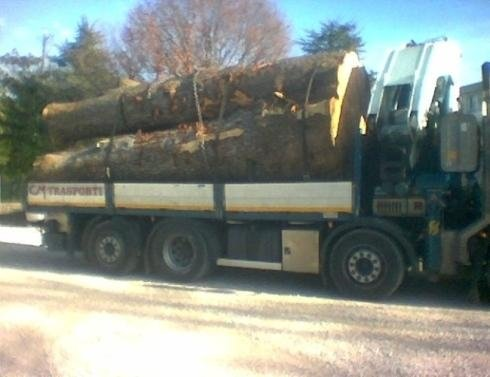 Autocarro per trasporto legname
