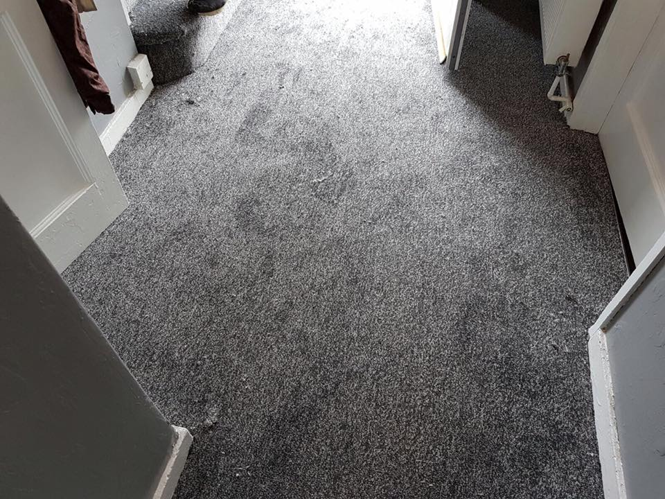 Flooring, Selsey, West Sussex
