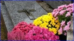 trasporti cimiteriali