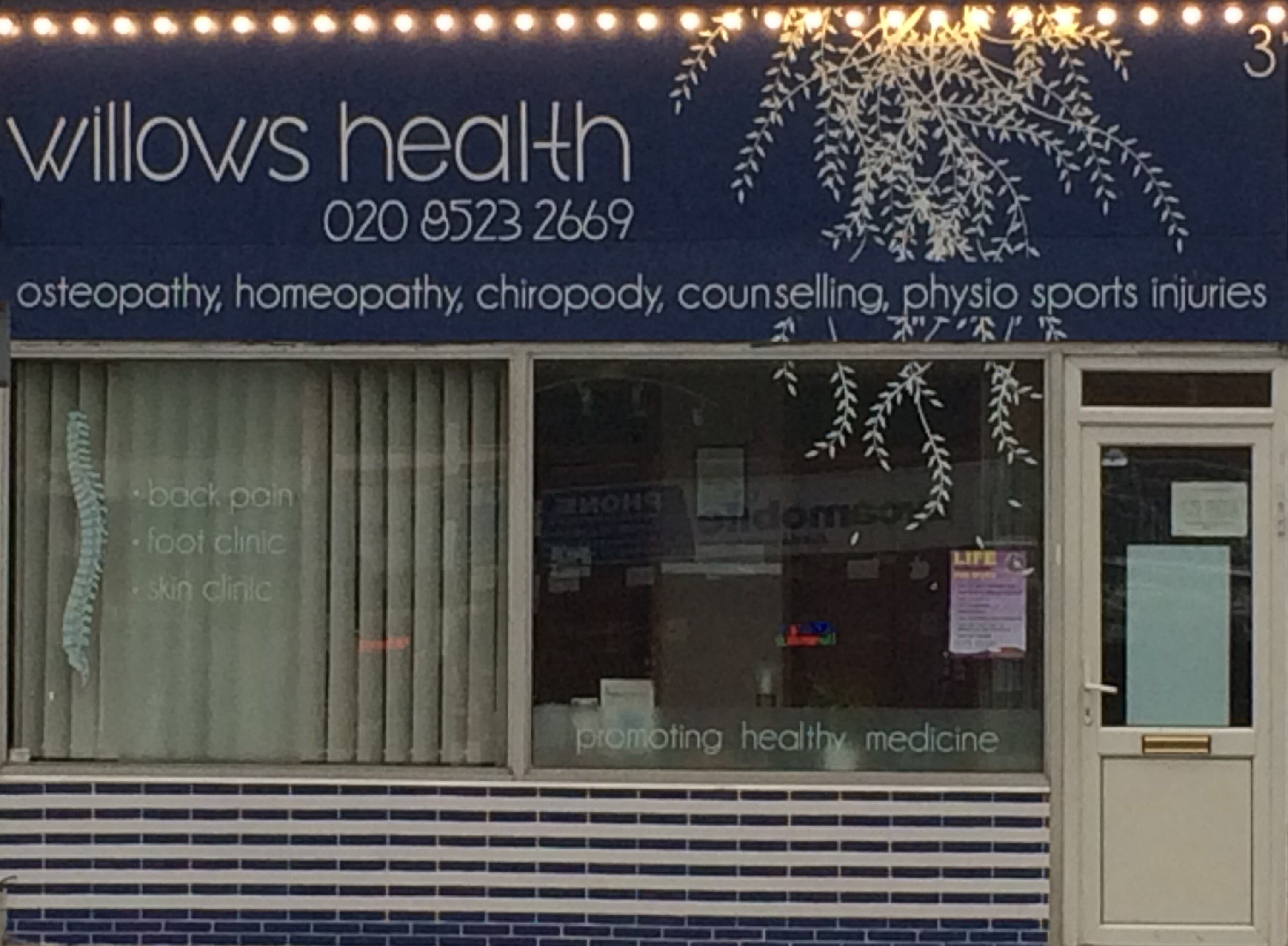 willows health store