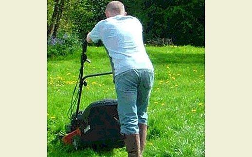 Noleggio tosa erba