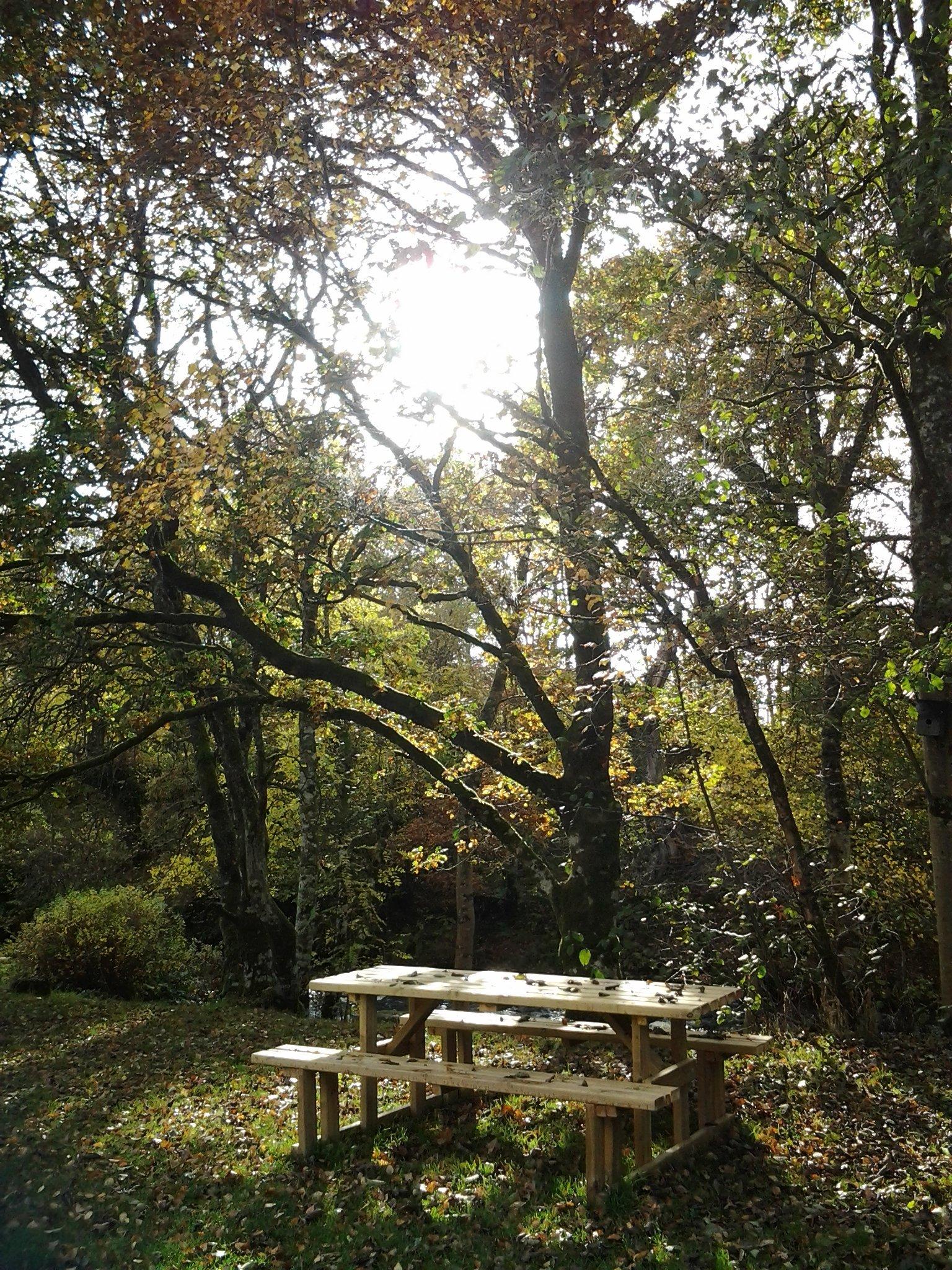 Tryweryn trail picnic area