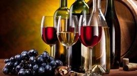 piatti tipici toscani, menu toscani, vini toscani