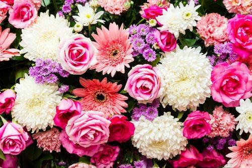 Fiori bianchi e rosa