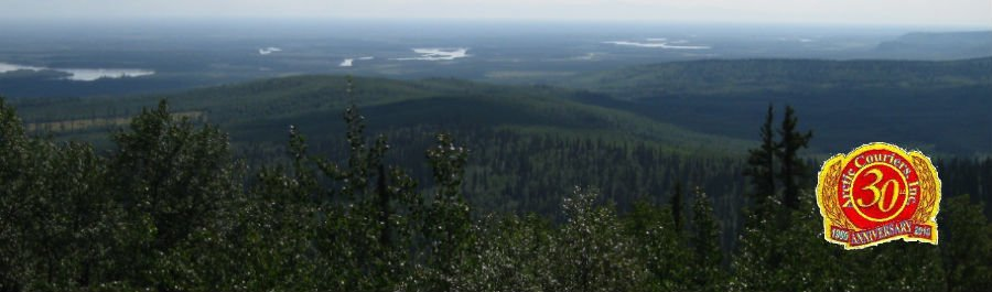 landscape in Fairbanks, Alaska
