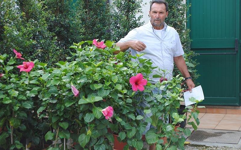 giardinieri specializzati