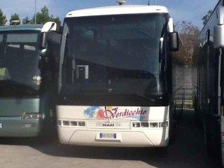 bus autolinea regionale verdicchio
