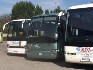 servizio noleggio autobus