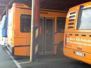 bus autolinea scolastica verdicchio