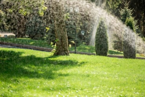 Sopralluoghi gratuiti giardiniere Vicenza