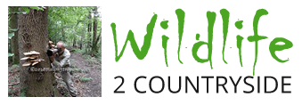 wildlife 2 countryside logo