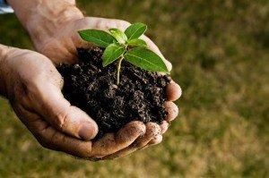 Soil Testing Experts
