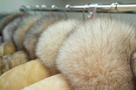 guardaroba pellicce