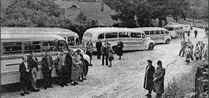 mckenzie buses