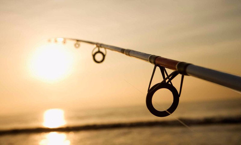 fishing pole ocean sunset