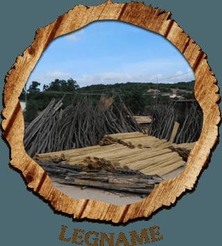 Vendita legname all'ingrosso