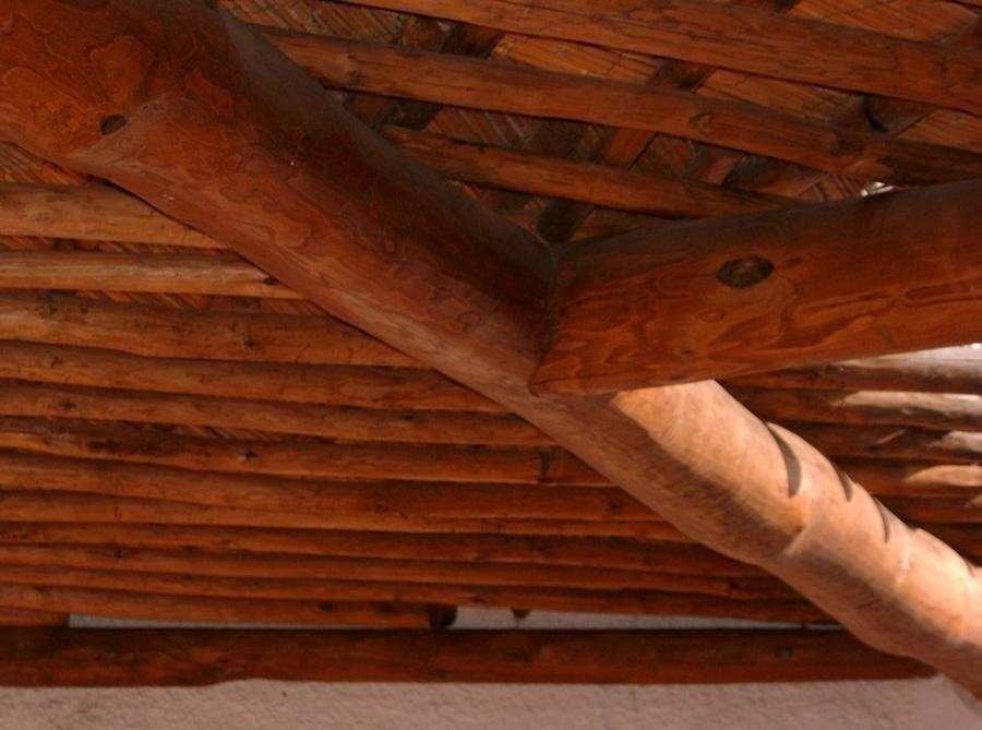 tettoia pergolato