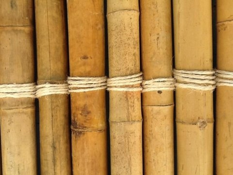 costruzioni in bambu