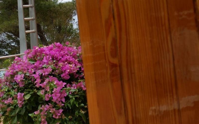 dettaglio parete in legno e fiori fucsia