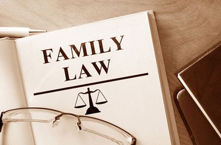 FAMILY LAW book