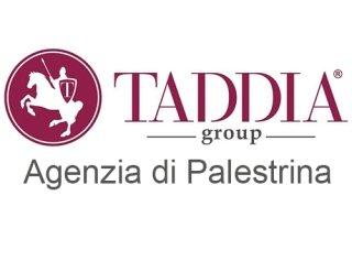 Taddia group