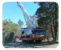 MLC operating crane