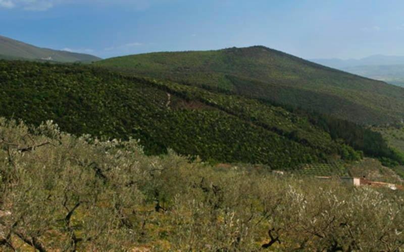 Territorio Foligno