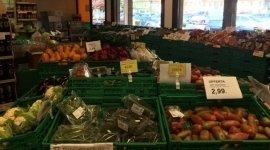 pomodori, insalate, ortaggi
