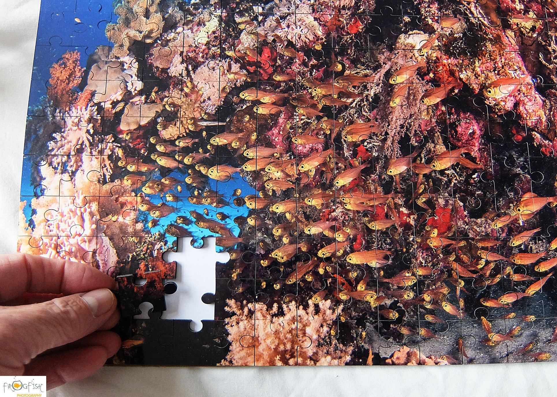 Jigsaw Puzzle, Underwater, Gift