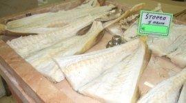 pesce conservato