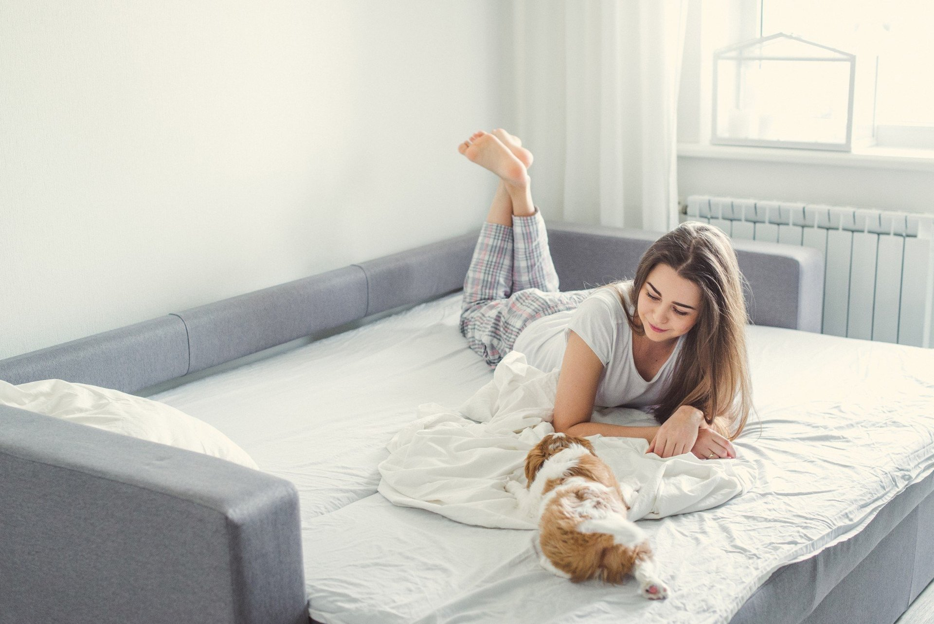Ragazza con cane su un divano letto