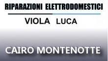 Viola Luca