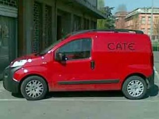 riparazioni Cate