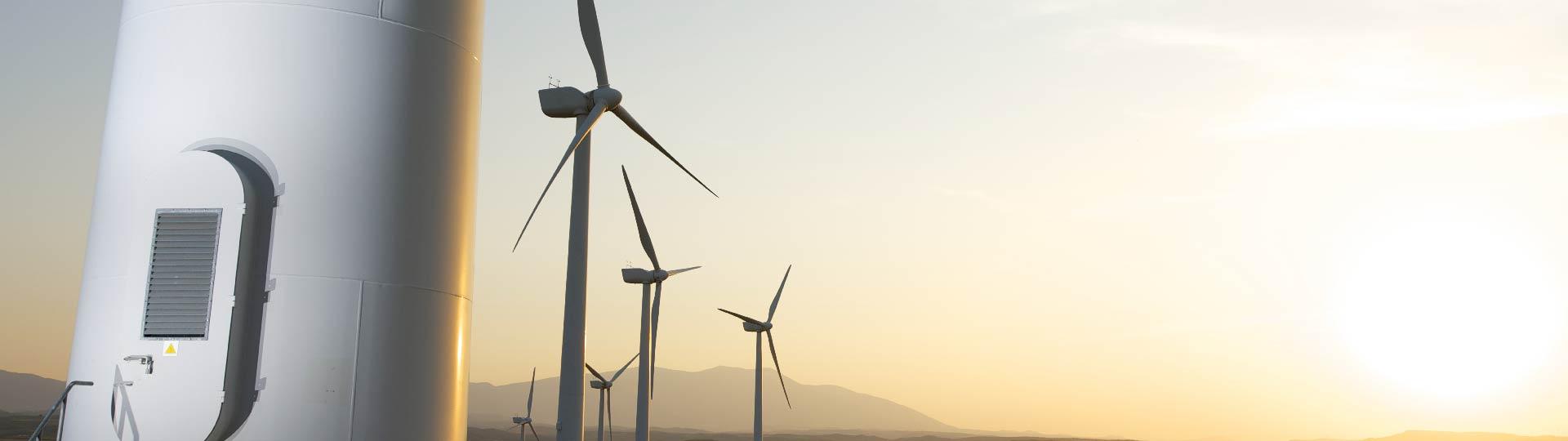 renewable energy source