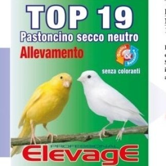 ElevagE TOP