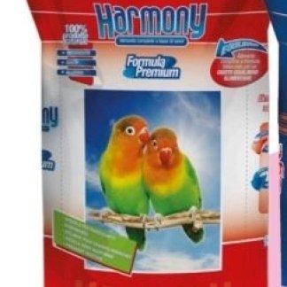 Harmony Agapornide premium