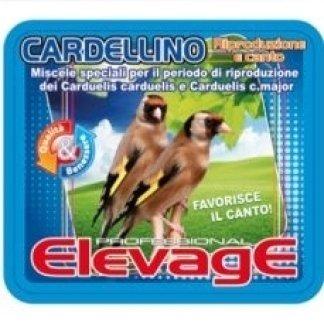 ElevagE Cardellino
