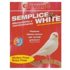 semplice white